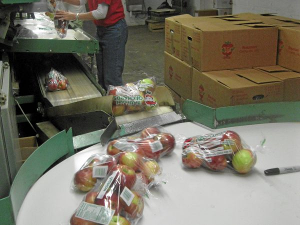Bauman Orchards - Apple Packaging