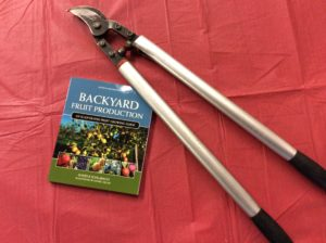 Bauman Orchards - pruning seminar