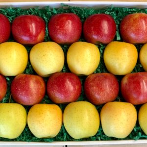 Bauman Orchards - Apple Gift Box